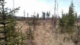 C22 Alaskan Wildwood Ranch(R) - Photo 18