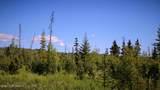 C22 Alaskan Wildwood Ranch(R) - Photo 9