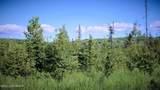 C23 Alaskan Wildwood Ranch(R) - Photo 11