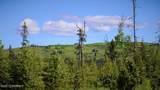 C23 Alaskan Wildwood Ranch(R) - Photo 12