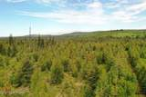 C23 Alaskan Wildwood Ranch(R) - Photo 13