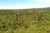 C23 Alaskan Wildwood Ranch(R) - Photo 15