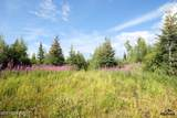 C23 Alaskan Wildwood Ranch(R) - Photo 4