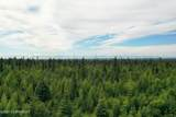 C23 Alaskan Wildwood Ranch(R) - Photo 6
