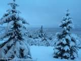 7230 Montagne Circle - Photo 87