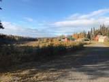 47587 Miller Loop Road - Photo 43