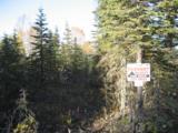 L10B B2 Tolum Road - Photo 1
