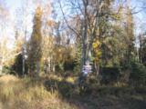 53835 Stol Road - Photo 1