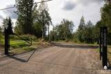 16906 Old Glenn Highway - Photo 60