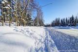4031 Lore Road - Photo 4