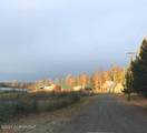 47587 Miller Loop Road - Photo 48