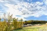 3051 Barn Gable Loop - Photo 60