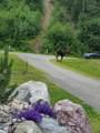 22135 Aurora Borealis Road - Photo 8