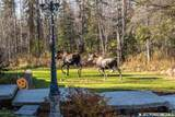 4520 Lakeside Drive - Photo 58