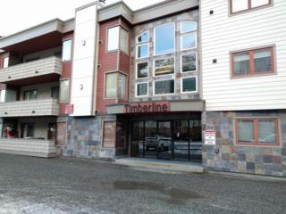 314 Crystal Mountain Road #101, Girdwood, AK 99587 (MLS #16-14168) :: Foundations Real Estate Experts