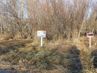15862 W Glenn Highway, Sutton, AK 99674 (MLS #16-17532) :: Foundations Real Estate Experts