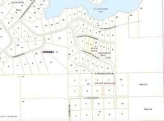 18200 E Eska Mountain Way, Sutton, AK 99674 (MLS #17-1584) :: Foundations Real Estate Experts