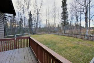 1675 Ranch Road, Palmer, AK 99645 (MLS #17-3857) :: RMG Real Estate Experts