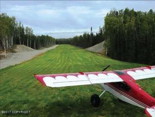 15721 E Kitty Hawk Circle, Talkeetna, AK 99676 (MLS #17-4327) :: Team Dimmick