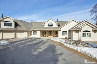 4831 Southpark Bluff Drive, Anchorage, AK 99516 (MLS #17-4988) :: RMG Real Estate Experts