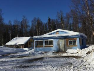 25720 S Wolf Track Road, Talkeetna, AK 99676 (MLS #17-5215) :: RMG Real Estate Experts