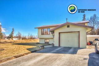606 W Fern Avenue, Palmer, AK 99645 (MLS #17-5644) :: RMG Real Estate Experts