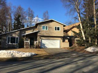 13321 Vern Drive, Anchorage, AK 99516 (MLS #17-5655) :: RMG Real Estate Experts
