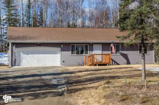 2380 N Little John Way, Wasilla, AK 99623 (MLS #17-5757) :: RMG Real Estate Experts