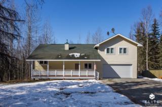 23112 Melana Circle, Chugiak, AK 99567 (MLS #17-5771) :: RMG Real Estate Experts