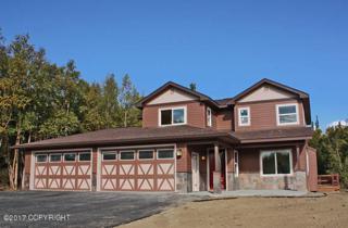 10761 E E Brittney Cir, Palmer, AK 99645 (MLS #17-5826) :: RMG Real Estate Experts