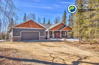 4417 N Wyoming Drive, Wasilla, AK 99623 (MLS #17-5830) :: RMG Real Estate Experts