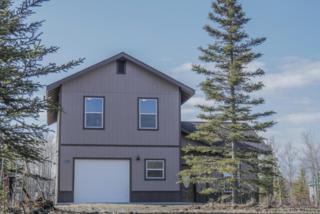 47917 Snipe Avenue, Soldotna, AK 99669 (MLS #17-5850) :: RMG Real Estate Experts
