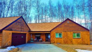 24411 Magpie Drive, Chugiak, AK 99567 (MLS #17-5883) :: RMG Real Estate Experts