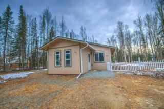 3543 Emerald Isle Circle, Houston, AK 99694 (MLS #17-5970) :: RMG Real Estate Experts