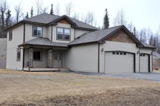 7712 E Downstream Drive, Palmer, AK 99645 (MLS #17-5978) :: RMG Real Estate Experts