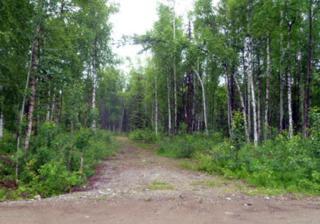 24810 W Long Lake Road, Willow, AK 99688 (MLS #17-6002) :: RMG Real Estate Experts
