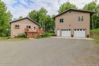 15991 E Nichols Drive, Talkeetna, AK 99676 (MLS #17-6034) :: RMG Real Estate Experts