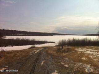 3651 N Meadow Lakes Drive, Wasilla, AK 99623 (MLS #17-6038) :: RMG Real Estate Experts