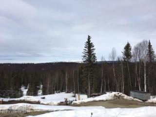 12937 W Snowberry Road, Willow, AK 99688 (MLS #17-6069) :: RMG Real Estate Experts