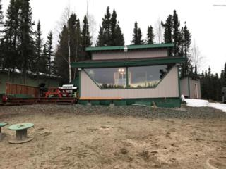 21297 N William Place, Willow, AK 99688 (MLS #17-6080) :: RMG Real Estate Experts