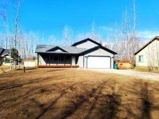 800 Park Place, Palmer, AK 99645 (MLS #17-6132) :: RMG Real Estate Experts