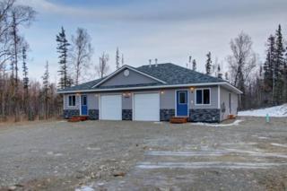 4749 W Kaylee River Circle, Wasilla, AK 99623 (MLS #17-6205) :: RMG Real Estate Experts