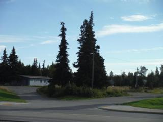 11823 Kenai Spur Highway, Kenai, AK 99611 (MLS #17-6212) :: RMG Real Estate Experts
