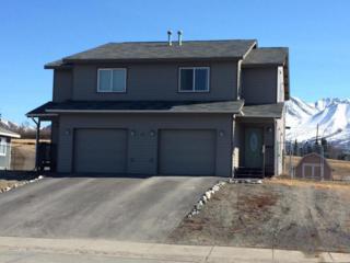 171 S Denali Street, Palmer, AK 99645 (MLS #17-6221) :: RMG Real Estate Experts