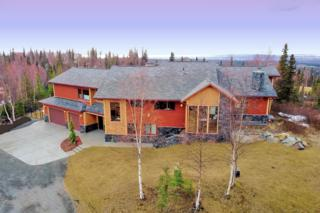 9850 Conifer Street, Anchorage, AK 99507 (MLS #17-6238) :: RMG Real Estate Experts