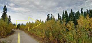 18810 N Mae Loop, Willow, AK 99688 (MLS #17-6240) :: RMG Real Estate Experts
