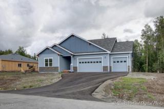 3401 N Snowgoose Road, Palmer, AK 99654 (MLS #17-6287) :: RMG Real Estate Experts