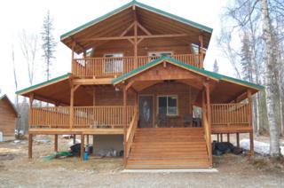 25460 S Talkeetna Spur Road, Talkeetna, AK 99676 (MLS #17-6294) :: RMG Real Estate Experts