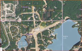 11369 N Pilot Drive, Willow, AK 99688 (MLS #17-6297) :: RMG Real Estate Experts