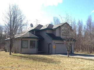 5030 E Brumage Drive, Wasilla, AK 99654 (MLS #17-6313) :: RMG Real Estate Experts